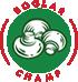 Boglar Champ